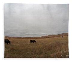 Bison, South Dakota Fleece Blanket