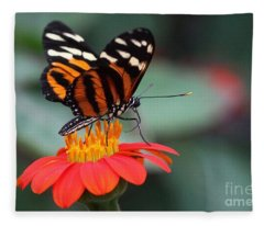 Black And Brown Butterfly On A Red Flower Fleece Blanket