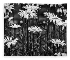 Black And White Daisies Fleece Blanket