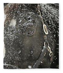 Black Beauty In A Blizzard Fleece Blanket