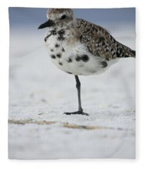 Black-bellied Plover Fleece Blanket