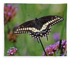 Black Swallowtail Butterfly  Fleece Blanket
