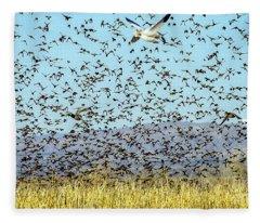 Blackbirds And Geese Fleece Blanket