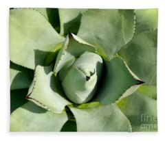 Blue Agave Fleece Blanket