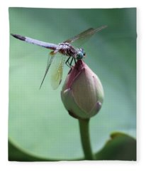 Blue Dragonflies Love Lotus Buds Fleece Blanket