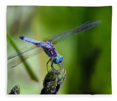 Blue Dragonfly Fleece Blanket