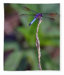 Blue Dragonfly On A Blade Of Grass  Fleece Blanket