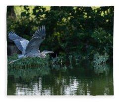 Blue Heron Take-off Fleece Blanket