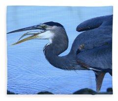 Blue Heron Gulp Fleece Blanket