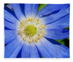 Blue Swan River Daisy Fleece Blanket