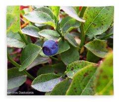 Blueberry Fleece Blanket