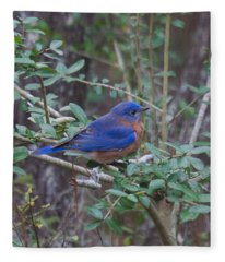 Bluebird Fleece Blanket