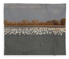 Bosque Del Apache Panarama Fleece Blanket