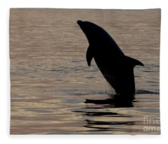 Bottlenose Dolphin Fleece Blanket
