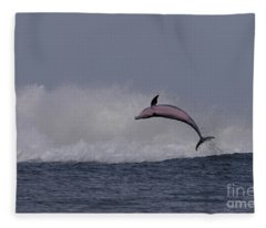 Bottlenose Dolphin Photo Fleece Blanket