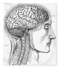 Brain From Right Side, 1883 Fleece Blanket