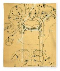 Brain Vestibular Sensor Connections By Cajal 1899 Fleece Blanket