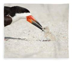 Black Skimmer And Chick. Fleece Blanket