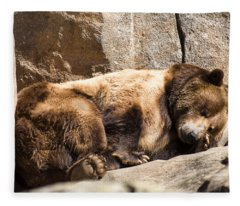 Brown Bear Asleep Again Fleece Blanket