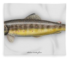 Brown Trout - Salmo Trutta Morpha Fario - Salmo Trutta Fario - Game Fish - Flyfishing Fleece Blanket