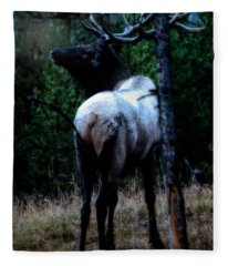 Bull Elk In Moonlight  Fleece Blanket