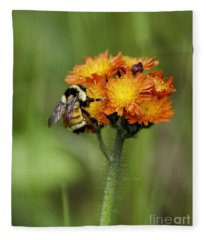 Bumble And Hawk Fleece Blanket