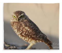 Burrowing Owl  Fleece Blanket