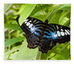 Butterfly On Leaf   Fleece Blanket