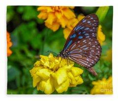 Butterfly On Yellow Marigold Fleece Blanket
