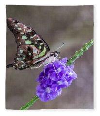 Butterfly - Tailed Jay I Fleece Blanket