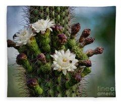 Cacti Bouquet  Fleece Blanket