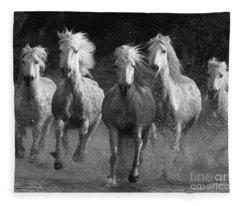White Horse Fleece Blankets