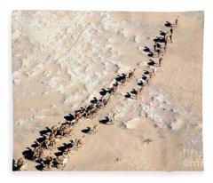 Camels Walking In Desert Fleece Blanket