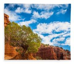 Caprock Canyon Tree Fleece Blanket
