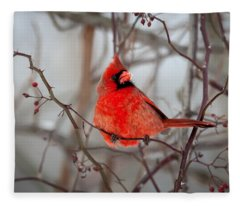 Cardinal Fleece Blanket