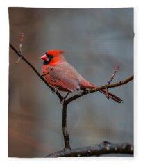 Cardinal Sing Fleece Blanket