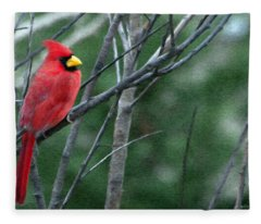 Cardinal West Fleece Blanket