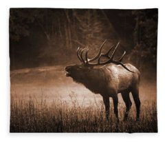 Cataloochee Bull Elk In Sepia Fleece Blanket