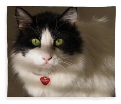 Cat's Eye Fleece Blanket