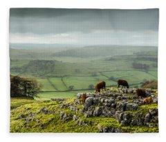 Cattle In The Yorkshire Dales Fleece Blanket