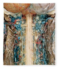 Cervical Spinal Cord, Posterior View Fleece Blanket