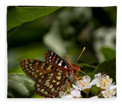 Checkerspot Sipping Nectar Fleece Blanket
