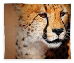 Cheetah Photographs Fleece Blankets