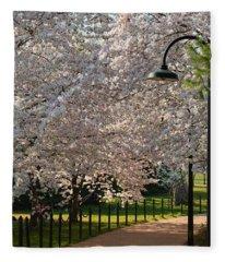 Cherry Blossoms 2013 - 060 Fleece Blanket