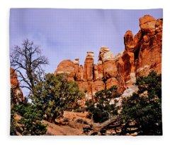 Chesler Park Pinnacles Fleece Blanket
