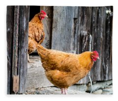 Chickens At The Barn Fleece Blanket
