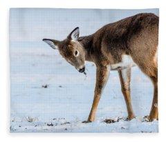 Children Eat Free Fleece Blanket