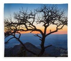 Chisos Tree Fleece Blanket