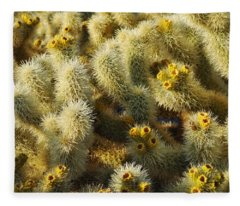 Cholla Cactus Garden Mirage Fleece Blanket