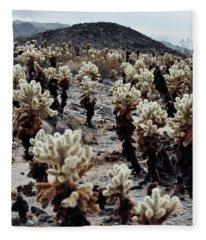 Cholla Teddy Bear Cactus Garden  Fleece Blanket